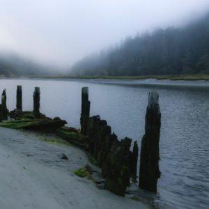 beach beside a river, fog