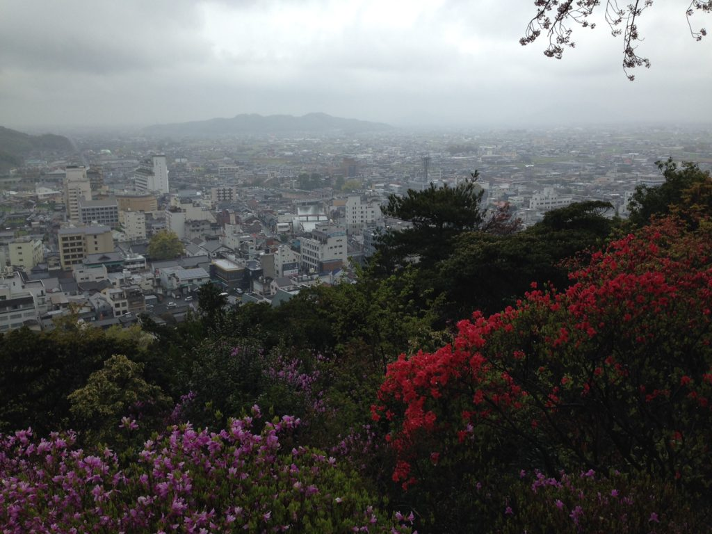 City in the distance, framed by flowering trees